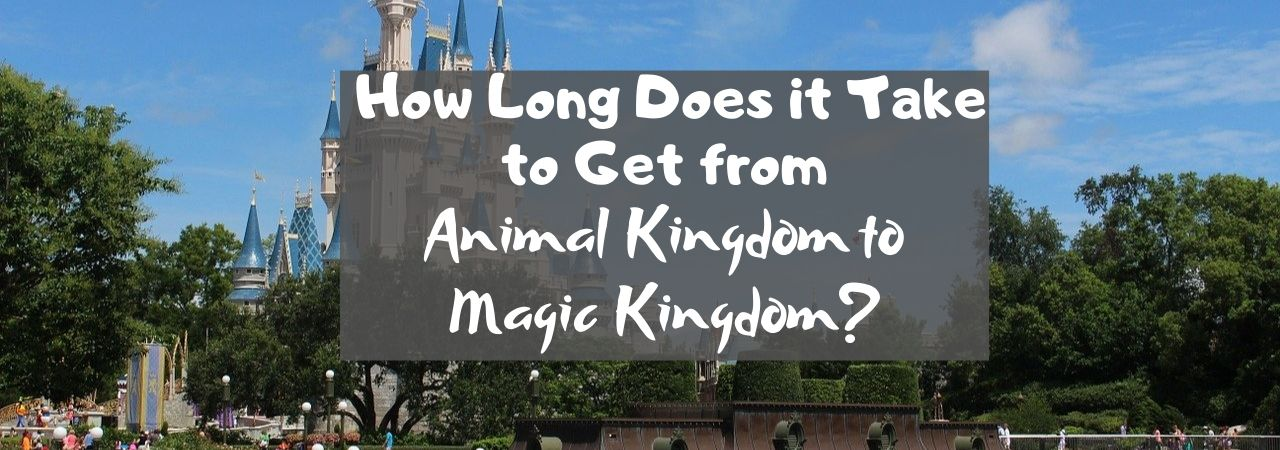 How Long Does it Take to Get from Animal Kingdom to Magic Kingdom?
