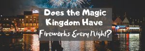 Does the Magic Kingdom Have Fireworks Every Night?